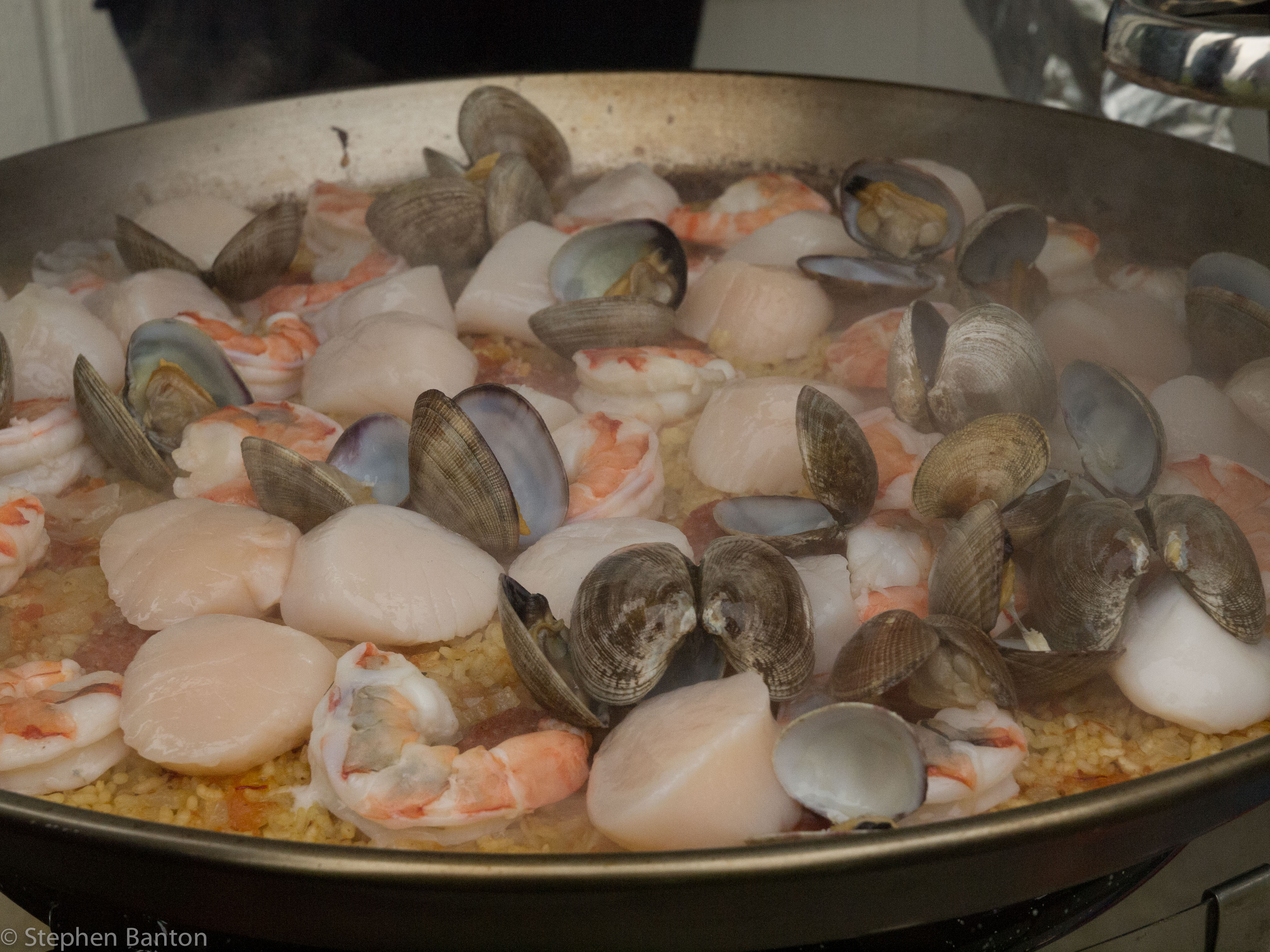 This past weekend,  Carol and I (Jack too) drove up to Long Beach WA to meet some friends for a Razor-Clamming excursion.  Digging up clams makes you hungry AND thirsty, so Matt and Tammy satisfied everyone's hunger that evening with a great Paellla!  Click on this picture to see more.
